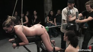 Will refrain Nude red fat girl bdsm
