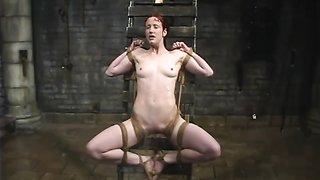 Free Gay Masturbation Porn